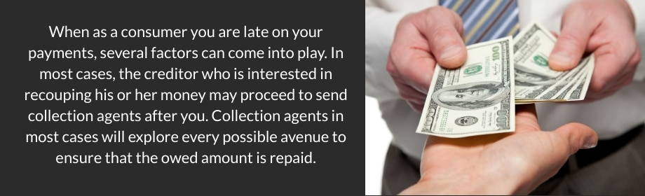 Repayment Options